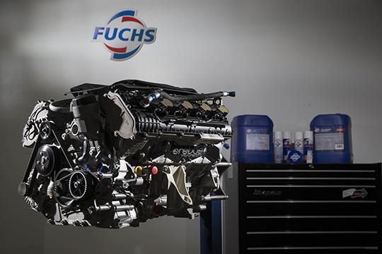 Erubus-FUCHS-0146